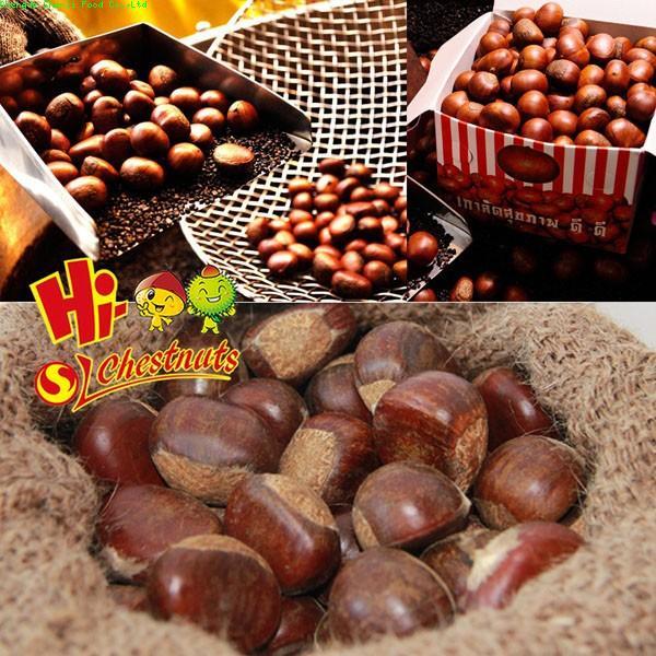 New crop Bulk fresh chestnuts for sale