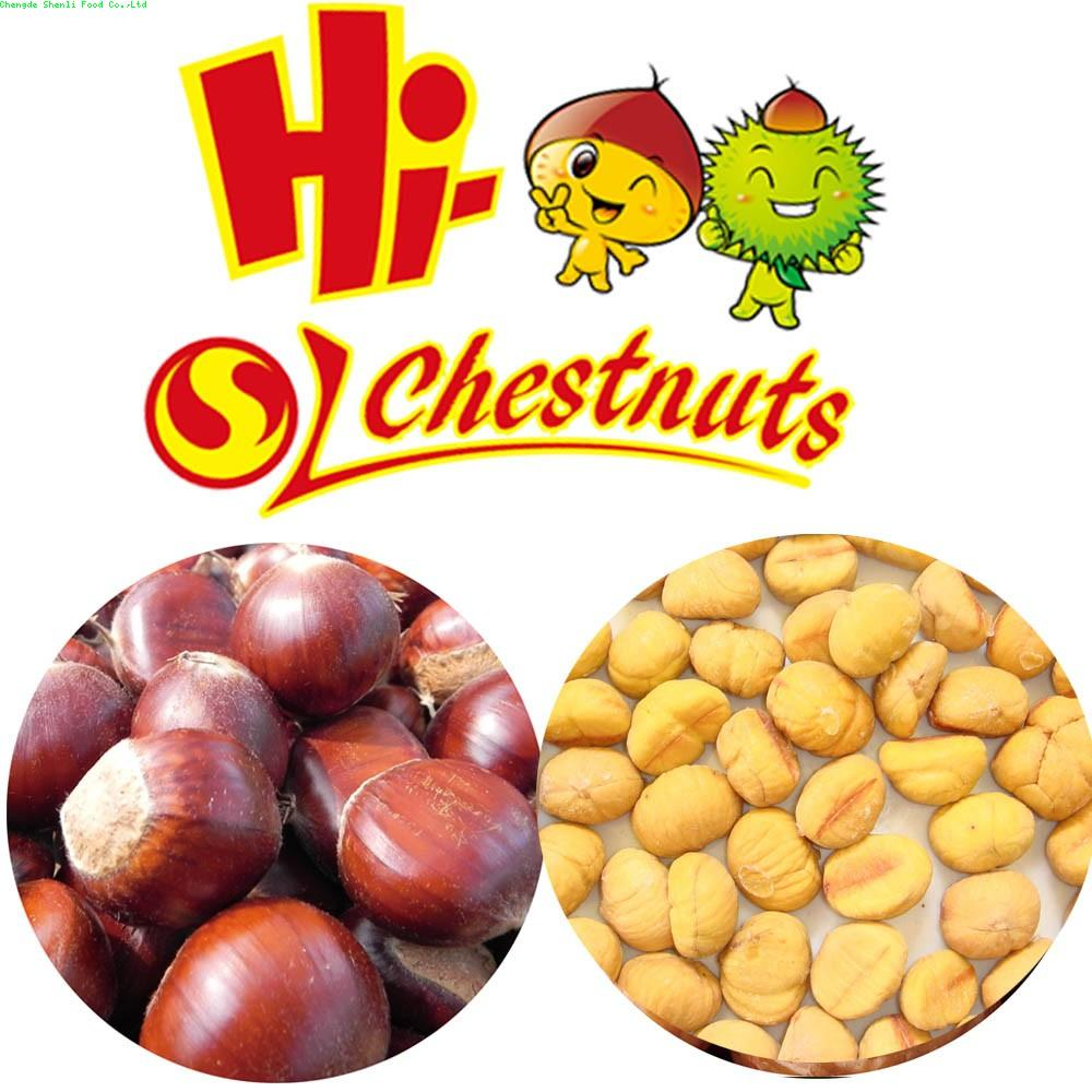IQF Chestnuts for sale -- Sweet Chestnuts