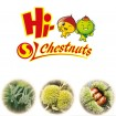 Export best fresh chestnuts