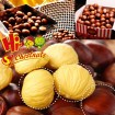 Sweet Fresh Chestnut in Shell for wholesale