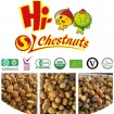 Frozen Peeled Chestnuts IQF Chestnuts for sale