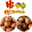 China best ringent chestnut